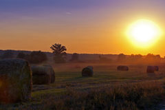 Terres cultivables et le coucher du soleil magnifique. Photo libre de droits