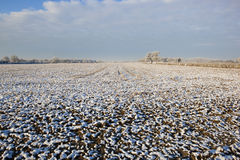 Terres cultivables givrées Photo libre de droits