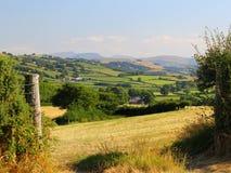 Terres cultivables, luxuriant et fertile, ensoleillées, avec le contexte de montagne Image stock