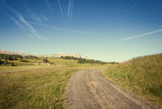 Terres cultivables vertes d'été Image libre de droits