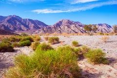 Terres de désert de Californie Photo libre de droits