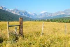 Terres de pâturage en parc national de glacier Photographie stock libre de droits