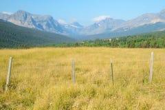 Terres de pâturage en parc national de glacier Images libres de droits
