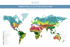 Free Terrestrial Ecosystem World Map. Biome. World Climatic Zone Infographic Design Stock Photo - 137929020