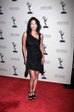 Terri Ivens arrives at the ATAS Daytime Emmy Awards Nominees Reception Stock Image