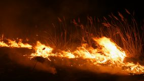A terrible dangerous wild fire at night in a field. Burning dry straw grass. A large area of nature in flames.