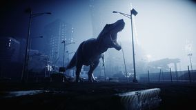 Terrible dinosaur trex in the night destroyed city. Apocalypse concept. Realistic 4K animation. stock video