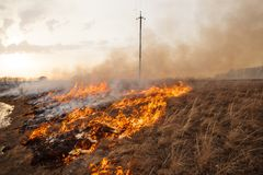 A terrible fire destroys the field. the flame burns the spring grass. security measures and prevent burning. A terrible fire destroys the field. the flame burns Stock Photo