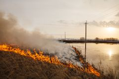 A terrible fire destroys the field. the flame burns the spring grass. security measures and prevent burning. A terrible fire destroys the field. the flame burns Royalty Free Stock Image