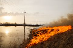 A terrible fire destroys the field. the flame burns the spring grass. security measures and prevent burning. A terrible fire destroys the field. the flame burns Royalty Free Stock Photos