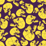 Terrible frightening seamless pattern with skull Royalty Free Stock Images