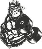 Terrible gorilla athlete Royalty Free Stock Images