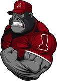 Terrible gorilla athlete. Vector illustration, terrible gorilla professional athlete, on a white background Stock Images