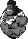 Terrible gorilla athlete Royalty Free Stock Photos