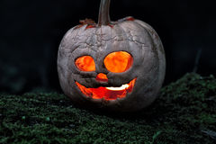 Terrible halloween pumpkin Royalty Free Stock Images
