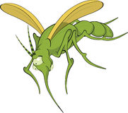 Terrible mosquito. Cartoon Royalty Free Stock Photography