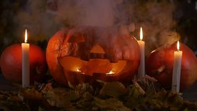 A terrible pumpkin in the smoke. Halloween concept stock video