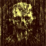 Terrible skull background into small debris. Stock Photo