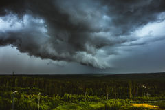 Terrible storm in forest. Thunderstorm and dark clouds Stock Images