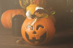 Terrible sweets for Halloween in decorative pumpkin on a dark ba Royalty Free Stock Photos