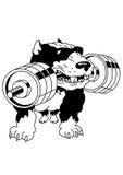 Terrier de dobermann de muscle Images libres de droits