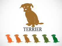 Terrier dog Royalty Free Stock Images