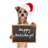 Terrier Dog With Santa Hat and Sign Royalty Free Stock Photo