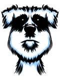 Terrier-Hundeporträt Lizenzfreies Stockbild