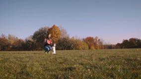 Terrier Jacks Russell geht auf seine Hinterbeine outdoor stock video