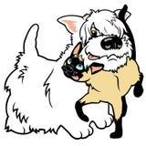 Terrier ocidental dos desenhos animados e gato siamese Foto de Stock Royalty Free