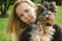 terrier yorkshire лета удерживания девушки дня солнечный стоковые изображения