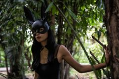 Terrify woman with black dress in forest. Portrait of Attractive Asian sexy terrify woman with black dress outfit and rabbit bunny ear mask at in forest with Stock Image