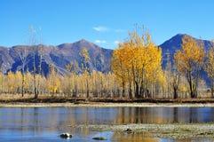 Territoriet av den Tibet Nu floden Royaltyfri Foto
