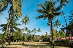 Territoriet av den tropiska semesterorten med gräsplan gömma i handflatan Royaltyfri Fotografi