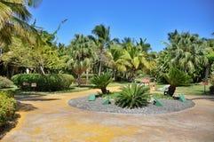 Territorio dell'hotel Catalogna Bavaro reale nella Repubblica dominicana Fotografie Stock