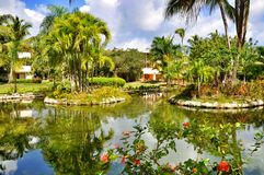 Territorio hermoso del hotel Cataluña Bavaro real en la República Dominicana Fotos de archivo libres de regalías