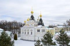 Territorium av bakgrund för vinter för region för Dmitrov KremlMoskva arkivfoton