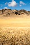 Territorium för jordbruksmark för klippabluffdal Stillahavs- nordvästligt Arkivfoton