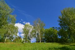 Territory of Eco Shore Park in Khimki, Russia Royalty Free Stock Photos