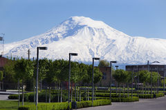 Territory of Etchmiadzin Cathedral, view  mountain Ararat, Masis on background Royalty Free Stock Photography