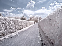 Territory of farmstead Kuskovo. Infrared photo Stock Photos