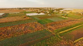 Territory Of Greenhouses On Agricultural Fields stock video