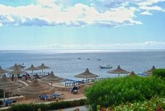 Territory of Hilton Sharks Bay hotel. The swimming pool in hotel of Egypt, landscaping, rest in the resort of the Red Sea in Sharm el-Sheikh, vacation holiday Stock Photography