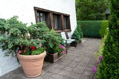 The territory of the house is decorated with a huge ceramic pot with flowers and coniferous trees stock images