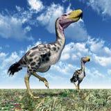 Terror Bird Kelenken Royalty Free Stock Photos