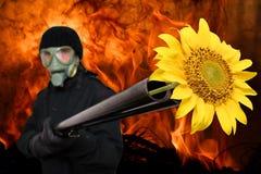 Terroriste doux et tendre images libres de droits
