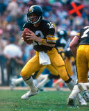 Terry Bradshaw Pittsburgh Steelers royaltyfri bild