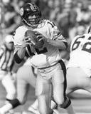 Terry Bradshaw. Pittsburgh Steelers QB Terry Bradshaw, #12. (Image taken from B&W negative Royalty Free Stock Photo