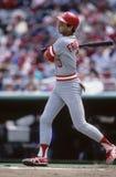Terry Francona. Cincinnati Reds batter Terry Francona.   Image taken from color slide Stock Image
