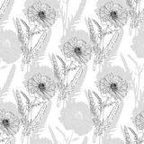 Terry poppy. Floral seamless texture. Stock Photography